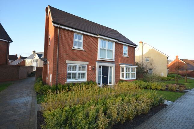 Thumbnail Detached house to rent in Waterloo Walk, Kings Hill, West Malling