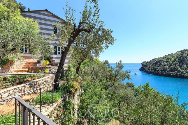 Thumbnail Villa for sale in Santa Margherita Ligure, Genova, Liguria