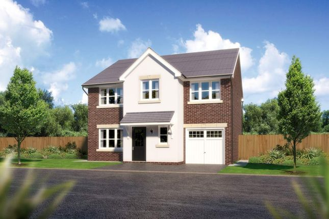 "Thumbnail Detached house for sale in ""Heddon"" at Padgbury Lane, Congleton"
