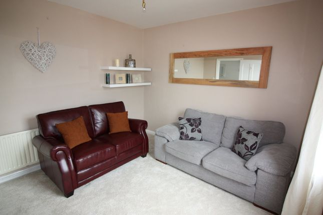 Thumbnail Town house to rent in West View Terrace, Exeter