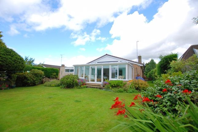Thumbnail Bungalow for sale in Errington Road, Ponteland, Newcastle Upon Tyne