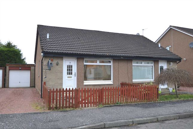 Thumbnail Bungalow for sale in Macdonald Grove, Bellshill