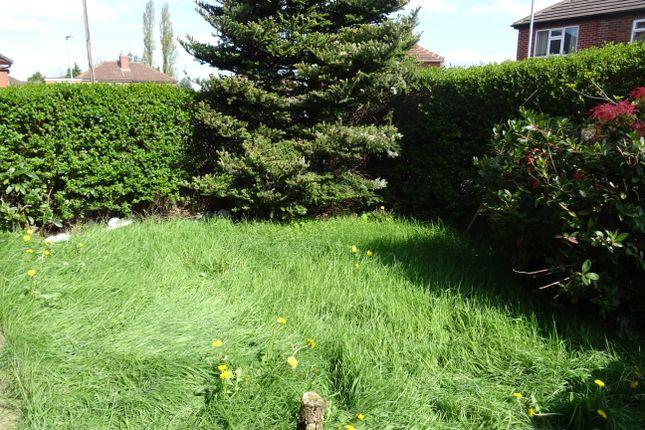 Front Garden of Vernon Road, Broom S60