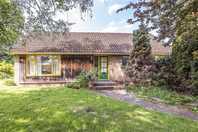 Thumbnail Detached bungalow to rent in Main Road, Otterbourne, Winchester