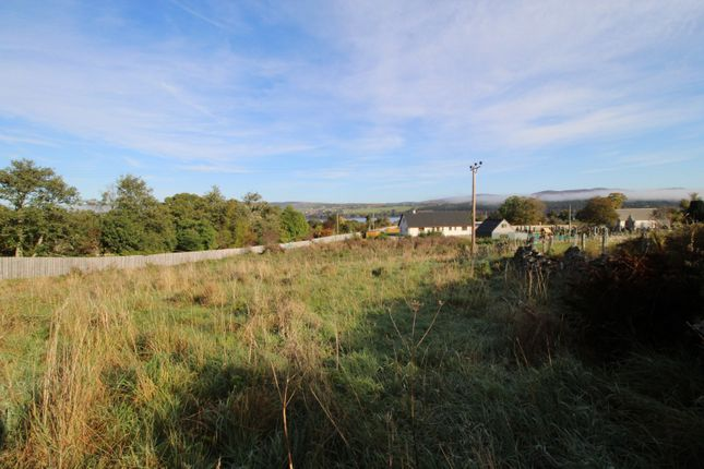 Picture No. 10 of The Plot Kincardine Hill, Ardgay, Sutherland IV24