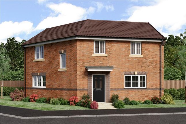 """Thumbnail Detached house for sale in """"Kipling"""" at Blackburn"""