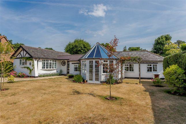 Thumbnail Bungalow for sale in Woodlands Lane, Windlesham, Surrey