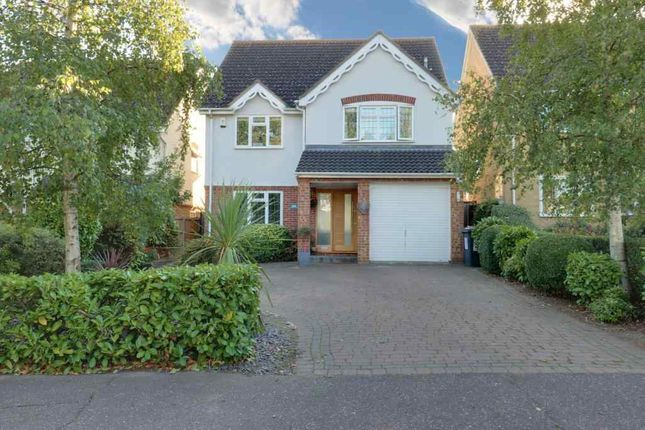 Thumbnail Detached house for sale in Rectory Avenue, Ashingdon, Rochford
