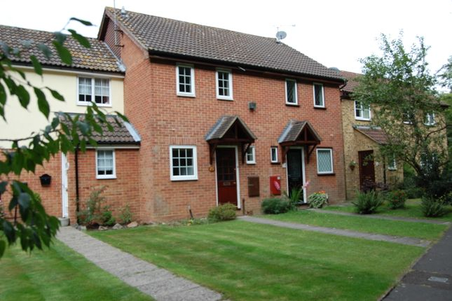 Thumbnail Terraced house to rent in Mosbach Gardens, Brentwood