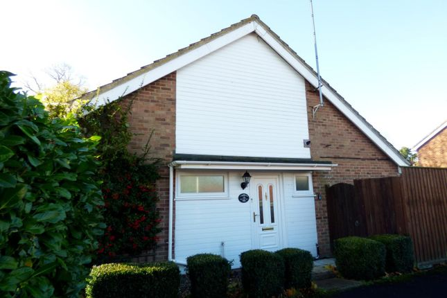Thumbnail Bungalow to rent in Boulters Way, Stowmarket