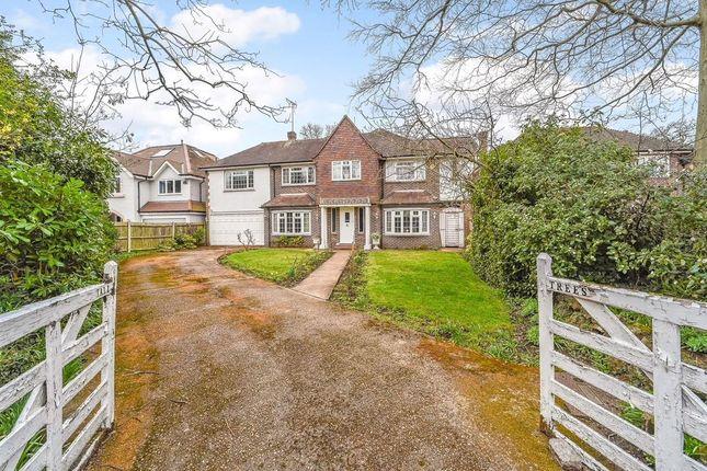 Thumbnail Detached house for sale in Marlborough Road, Hampton