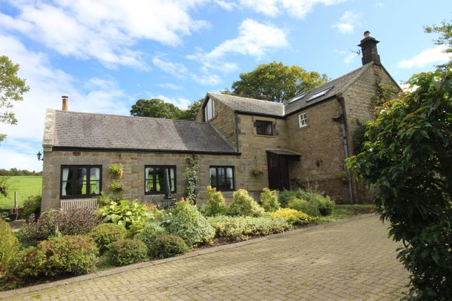 Thumbnail Cottage for sale in Eglingham, Alnwick
