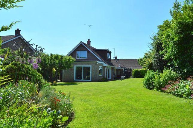 Thumbnail Detached bungalow for sale in Marks Close, Ruishton, Taunton, Somerset