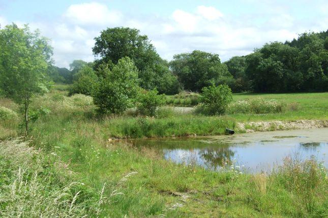 Thumbnail Land for sale in Shebbear, Beaworthy, Devon