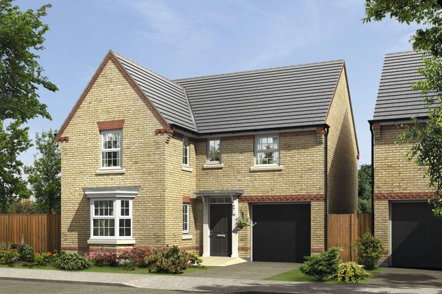"Thumbnail Detached house for sale in ""Drummond"" at Green Lane, Barnard Castle, Barnard Castle"