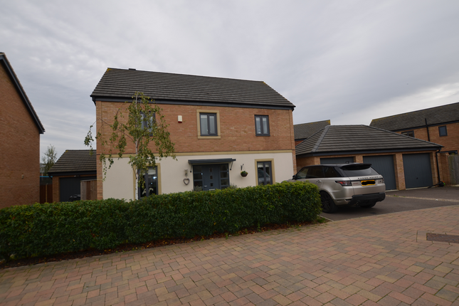 Thumbnail Detached house to rent in Saffron Drive, Hampton Vale, Peterborough