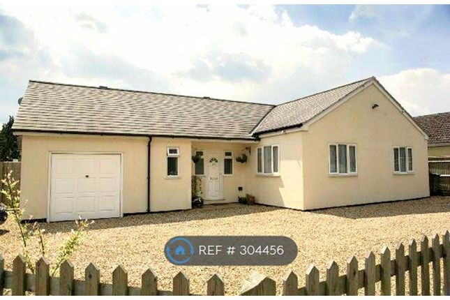 Thumbnail Bungalow to rent in Langley Hill, Tilehurst, Reading