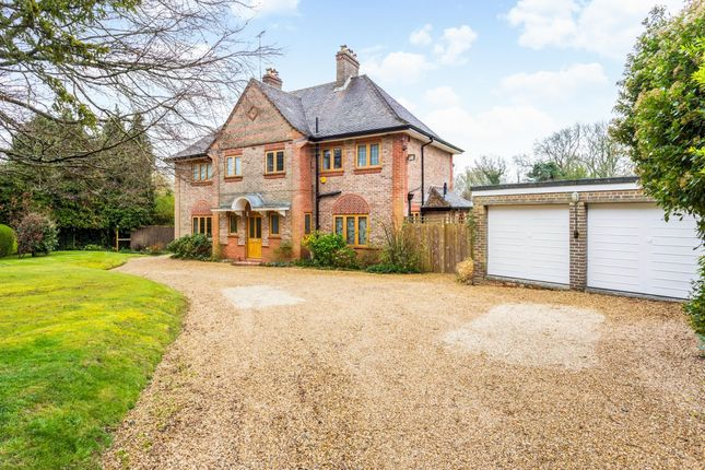 Thumbnail Detached house to rent in Birch Avenue, Haywards Heath