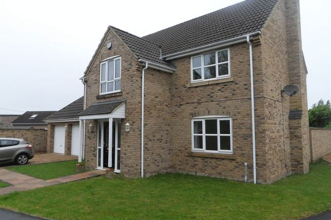 Thumbnail Detached house to rent in The Briars, Isleham, Ely