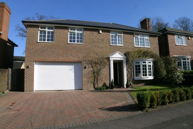 Thumbnail Detached house to rent in Churchill Drive, Weybridge, Surrey