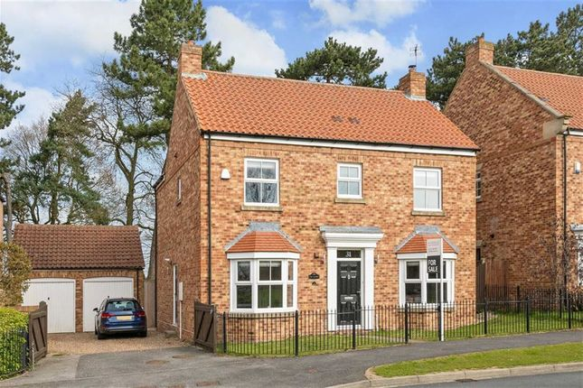 Thumbnail Detached house for sale in Back Lane, Whixley, York
