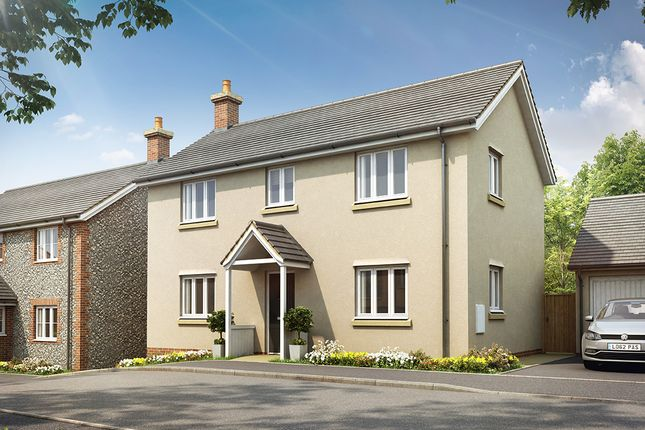 Thumbnail Detached house for sale in Hointon Road, Churchinford