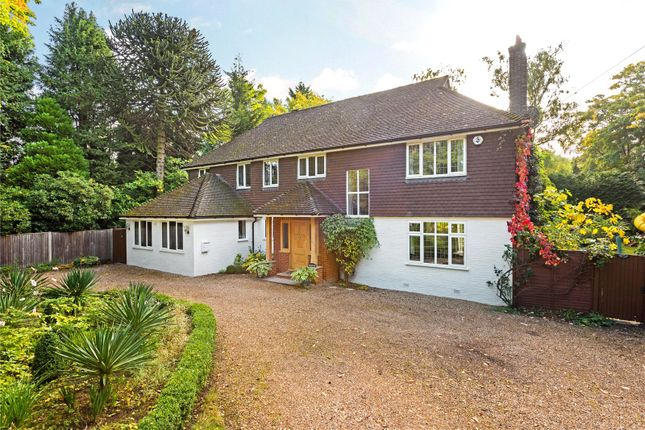 Thumbnail Detached house for sale in Blackdown Avenue, Pyrford, Surrey