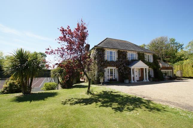 Thumbnail Detached house for sale in Telham Lane, Battle, East Sussex, .