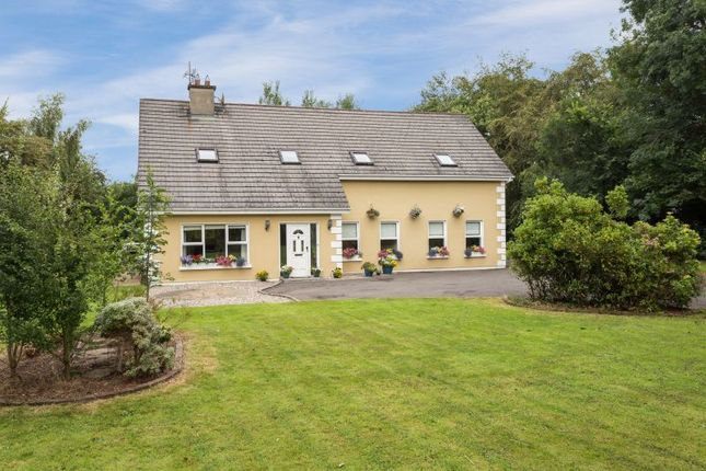 Thumbnail Detached house for sale in Holybrook, Ballyfarnogue, Screen, Wexford County, Leinster, Ireland