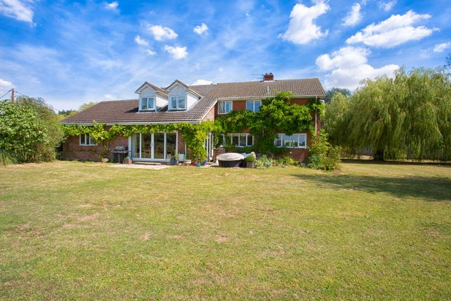 Thumbnail Detached house for sale in Suffolk, Badingham, Near Framlingham Equestrian Property
