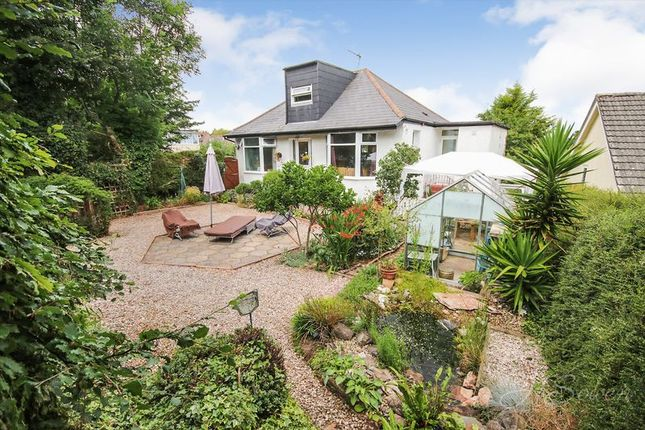 Thumbnail Detached house for sale in Nut Bush Lane, Torquay