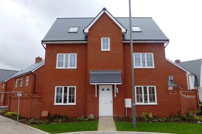 Thumbnail Property to rent in Birmingham Drive, Broughton, Aylesbury