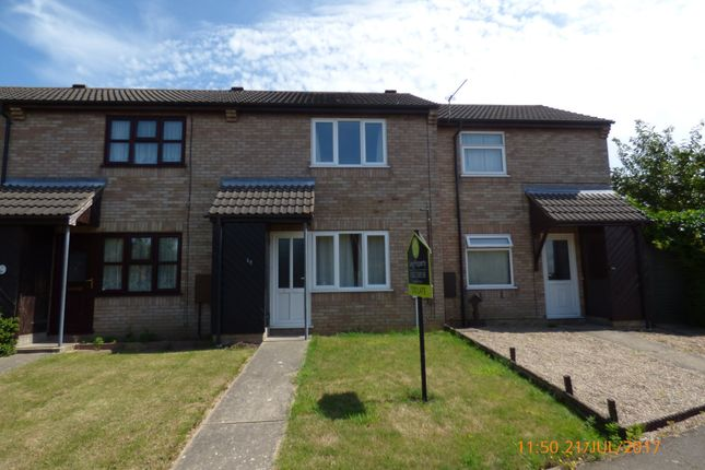 Thumbnail Terraced house to rent in Harebell Way, Carlton Colville, Lowestoft