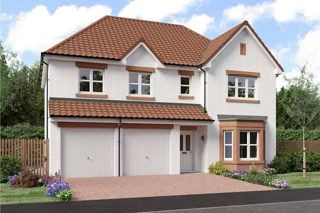 "Thumbnail Detached house for sale in ""Buttermere"" at Dirleton, North Berwick"