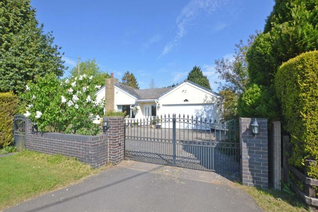 Thumbnail Detached bungalow for sale in The Firs, Lutterworth Road, Wolvey