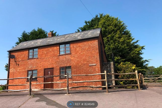 Thumbnail Detached house to rent in Westford Farm, Wellington