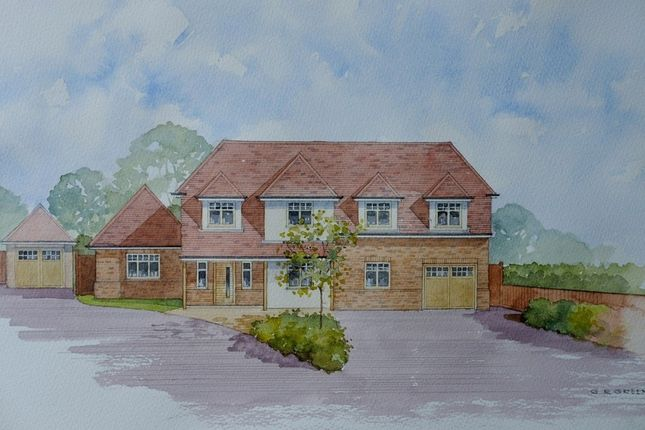 Thumbnail Detached house for sale in Willow Close, Rayleigh