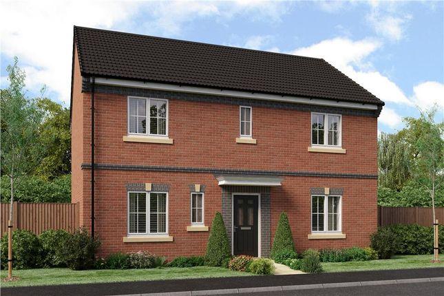 "Thumbnail Detached house for sale in ""Stevenson B"" at Joe Lane, Catterall, Preston"