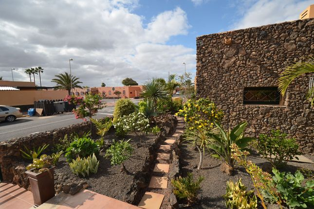 Frontyard of Drago 9, Corralejo, Fuerteventura, Canary Islands, Spain