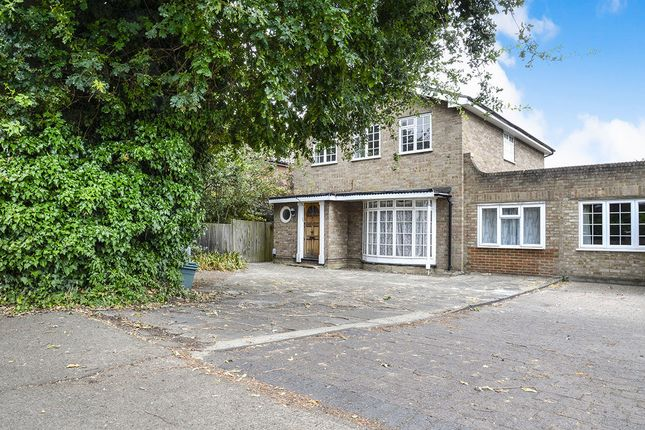 Thumbnail Detached house to rent in Upper Brighton Road, Surbiton