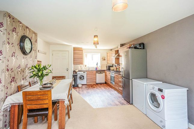 Thumbnail Semi-detached house to rent in Sycamore Drive, Wesham, Preston