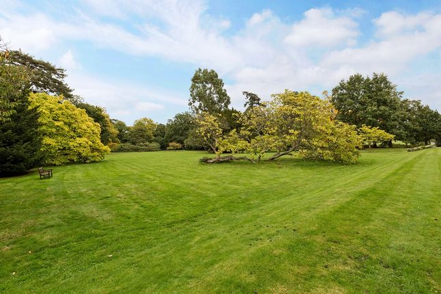 Grounds of Swallowfield Park, Swallowfield, Reading RG7
