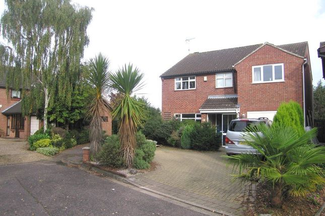 Thumbnail Property to rent in Harrison Close, Bretton, Peterborough