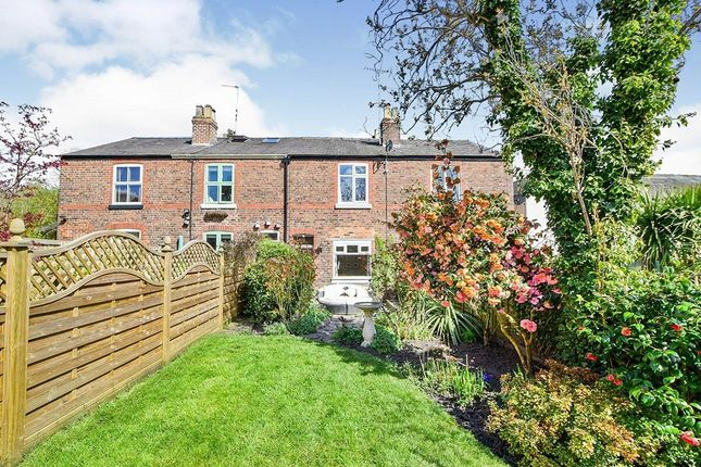 Thumbnail Terraced house for sale in Moss Rose, Alderley Edge