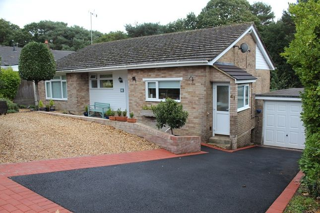 Thumbnail Detached bungalow for sale in West Way, Broadstone