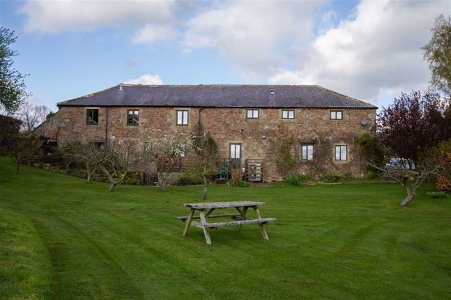 Thumbnail Detached house for sale in Sandy House, Milfield, Northumberland