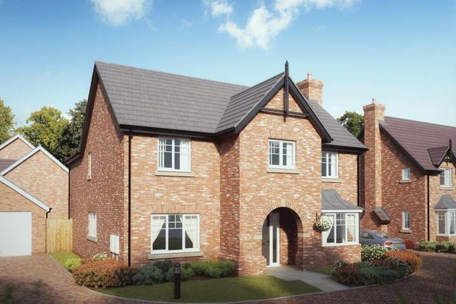 Thumbnail Detached house for sale in Chetwynd Mere, Newport, Shropshire