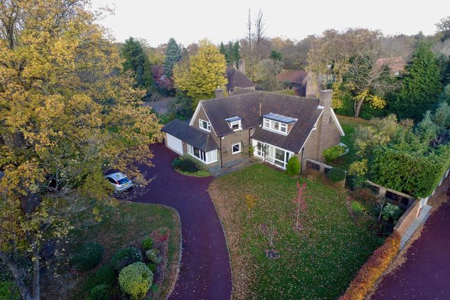 Thumbnail Detached bungalow for sale in Wilmerhatch Lane, Epsom