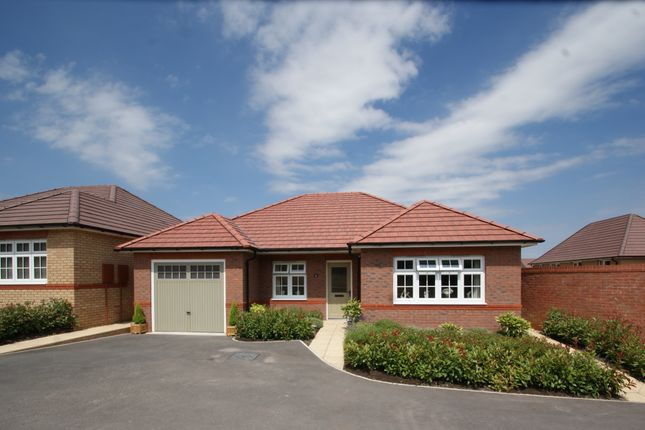 Thumbnail Detached bungalow for sale in Valerian Place, Newton Abbot