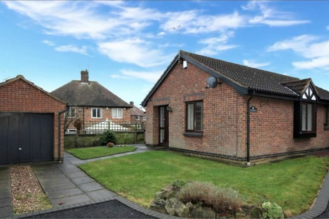 Thumbnail Detached bungalow to rent in Torvill Drive, Wollaton, Nottingham
